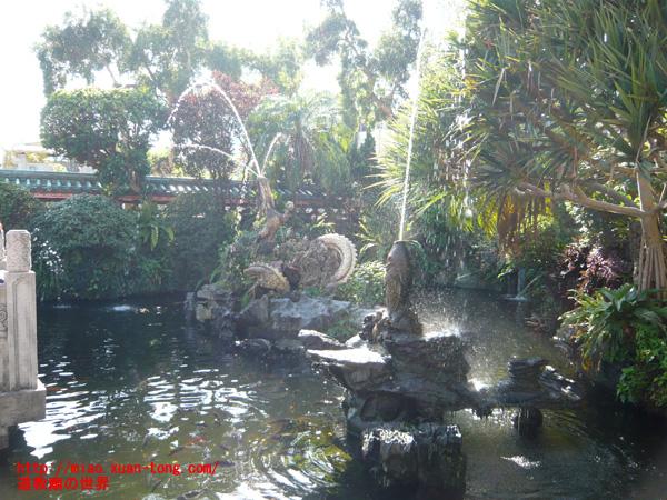 龍山寺境内、鯉の噴水